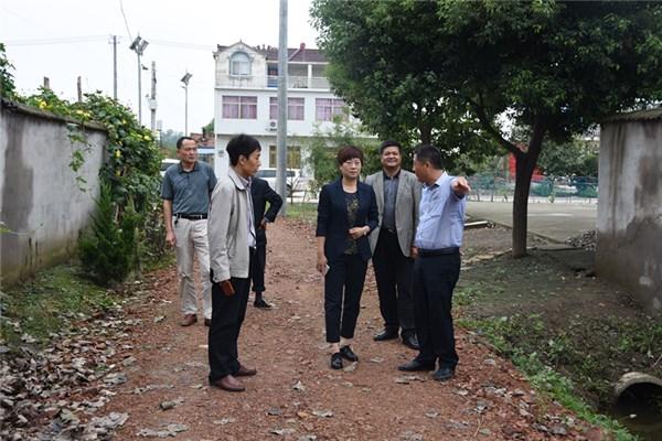 定远县:王红丽对炉桥二龙等乡镇党风廉政建设工作进行督查